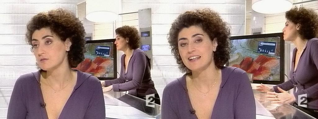 Brigitte-Fanny Cohen 02/02/2004
